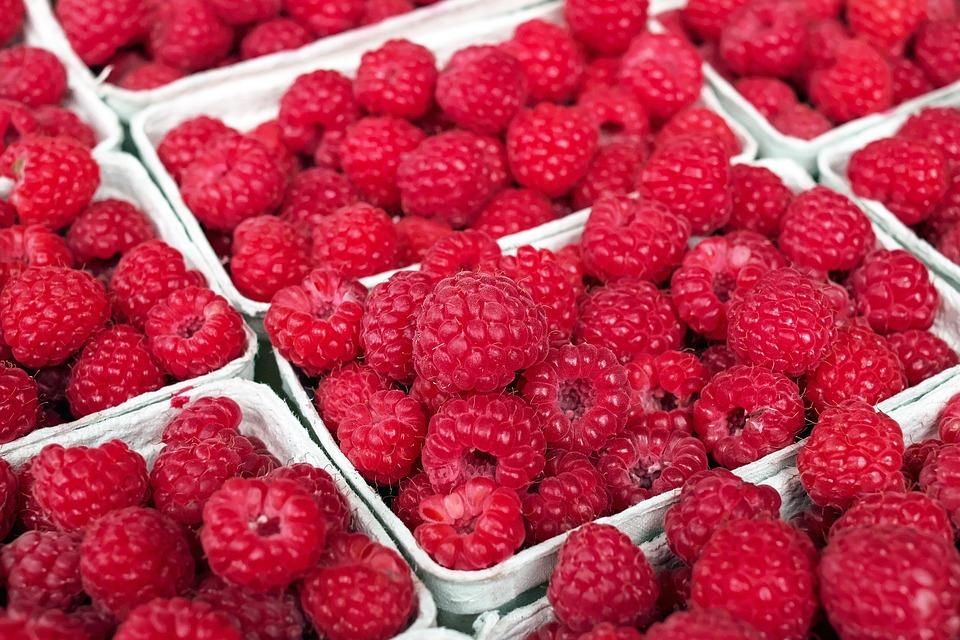 raspberry-1465988_960_720